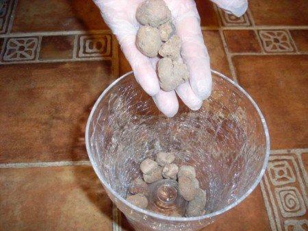 Дренаж из керамзита или гальки обязателен