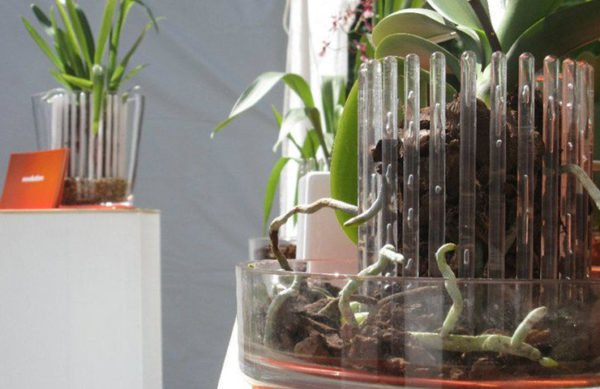 Горшки для орхидей фото